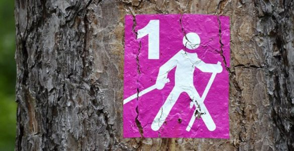 Nordic Walking The Tonic www.thetonic.co.uk
