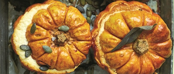 MINI_PUMPKINS_ (c) David Loftus